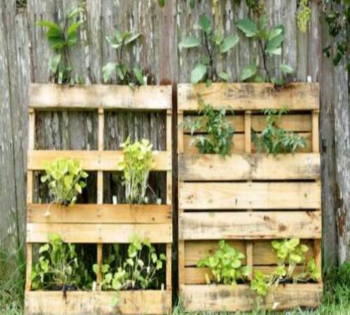 Ide Kreatif Membuat Kebun Vertikal dari Barang Bekas 5