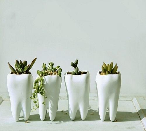 pot bunga dari pajangan gigi keramik