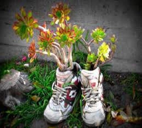 pot bunga dari sepatu bekas