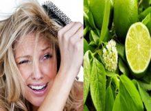 5 Efek Samping pada Rambut Anda Akibat Kelebihan Jeruk Nipis