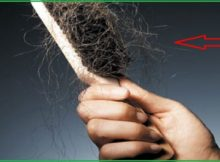 Penyebab Rambut Rontok dan Bagaimana Cara Mengatasinya